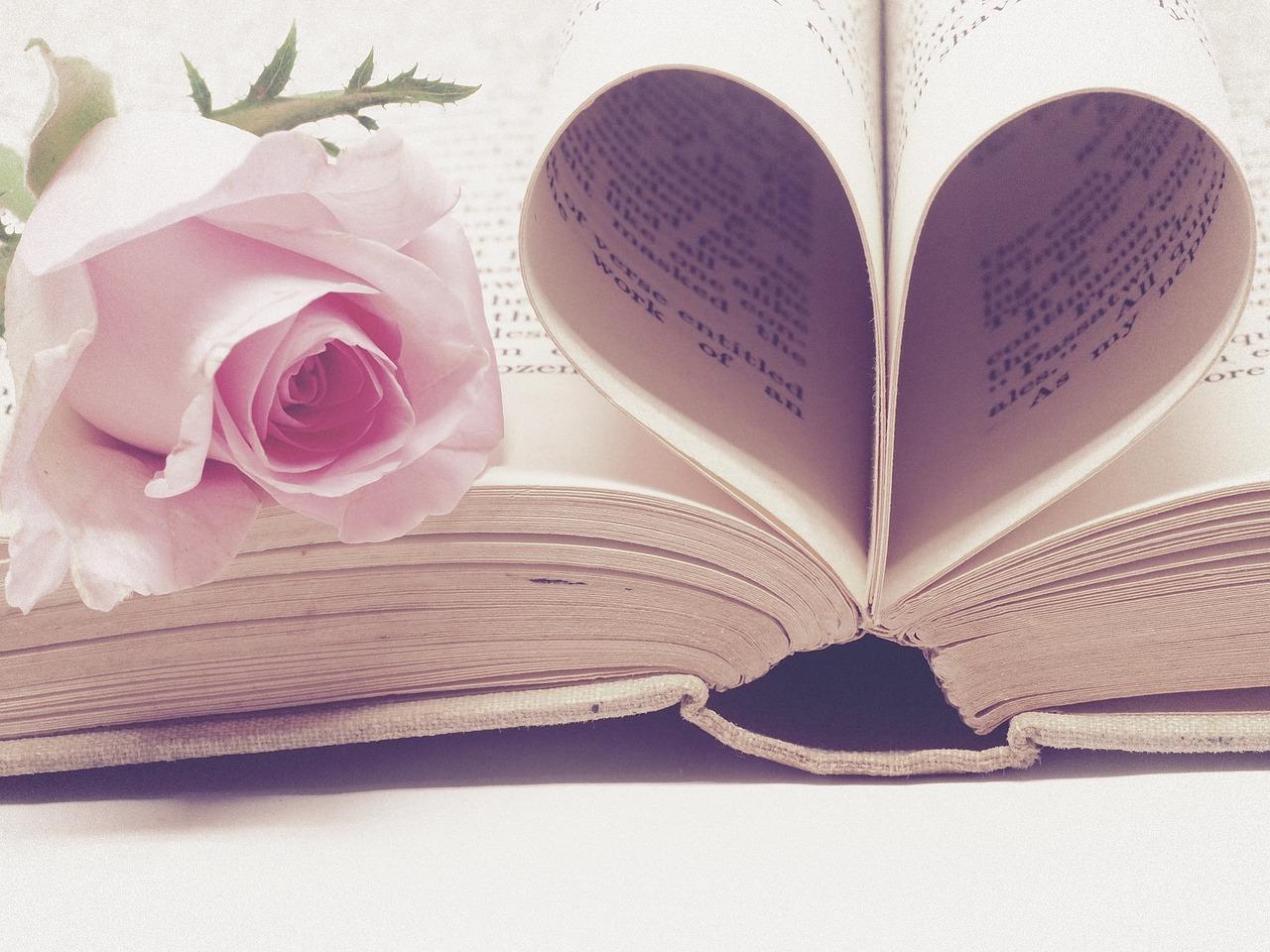 literature3060241 1280